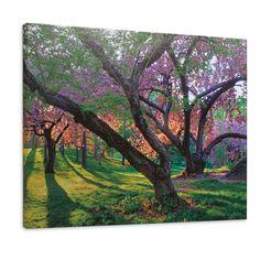 Spring Awakens Outdoor Art - Grandin Road