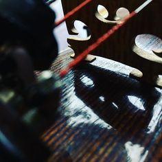 jakaś zjawa tu na mnie patrzy  _______ @jestrudo #fotowyzwaniejestrudo  Zadanie 6 #gdyzajdzieslonce _______ #violin   #violino   #violinist   #violinlife   #violingirl   #skrzypaczka   #skrzypce   #muzyka   #geige   #fiddle   #musicaclassica   #instrument   #instaclassical   #bestmusicshots    #soloist   #virtuoso   #stringmusician   #violinsolo   #jj_musicmember   #classicfm   #talentedmusicians   #instamusiciansdaily   #skrzypczyni