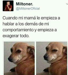 24 Ideas for memes divertidos de bebes Mexican Funny Memes, Mexican Jokes, Funny Spanish Memes, Spanish Humor, Memes Humor, Memes Br, New Memes, Stupid Funny Memes, Funny Relatable Memes