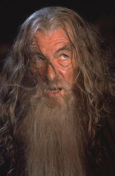 Gandalf, Hobbit Book, The Hobbit, Fellowship Of The Ring, Lord Of The Rings, Billy Boyd, Hugo Weaving, Sean Bean, Elijah Wood