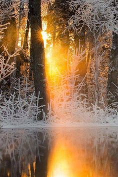 When Sun Meets Winter