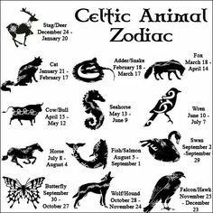 In-depth descriptions for all 13 CELTIC ZODIAC SIGNS. Learn all about your Celtic Animal Zodiac meanings, personality & traits. Celtic Astrology, too! Adder Snake, Celtic Animals, Book Of Shadows, Numerology, Magick, Wicca Witchcraft, Spirituality, Random, Sagittarius