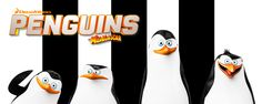 Tom McGrath Talks Voicing Skipper and the FUTURE of Dreamworks' 'Penguins of Madagascar' Smile And Wave, Just Smile, San Diego, Madagascar Wallpaper, Madagascar Film, Tom Mcgrath, Coming To Theaters, Dreamworks Movies, Film D'animation
