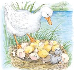 The ugly Duckling Cartoon Coloring Pages, Coloring Books, Iphone 6 Plus Wallpaper, Short Stories For Kids, Family Illustration, Bird Theme, Ugly Duckling, Kids Story Books, Animation Film