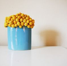 petite craspedia cluster: over 100 preserved yellow craspedia -billy buttons- clustered and painstakingly placed by me in a oval baby blue/ aquay ceramic vase. The outcome is modern with the texture of the buttons against the sleek vase.