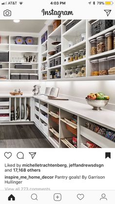 Walk in Pantry W/ counter space for appliances & individual slots for baking/pans.