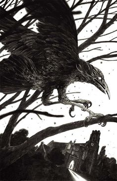 Canadian and French illustrator Nicolas Delort uses a so called scratchboard to create his intricate illustrations. By scratching the surface he's gently engraving lighter parts of the illustrations… Art And Illustration, Gravure Illustration, Black And White Illustration, Ink Illustrations, The Crow, Nicolas Delort, Arte Obscura, Scratchboard, Black White Art