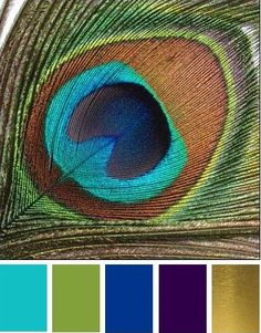 Peacock wedding colors The most popular colors for a peacock wedding are aqua, teal, green, gold, black and purple. Of course you can mix match these colors together to make your own color palette. You don't have to use all these colors for your wedding.