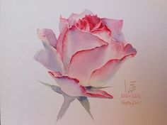 Watercolor by Sattha Homsawat (LaFe):