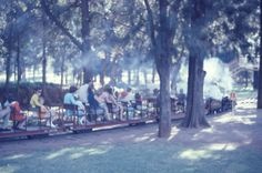 Miniature train at Centenary park Bulawayo. Take Risks, Zimbabwe, Homeland, Continents, Amazing Places, South Africa, The Good Place, Roots, The Past