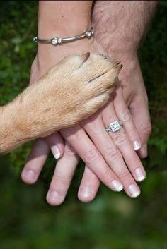 Best engagement photo!! Engagement photo with my dog <3