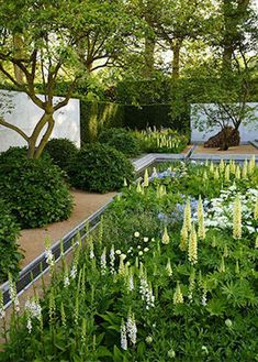 A look inside the backyard of a master gardener will give you all kinds of inspiration.