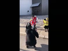 Adorable Transformers cosplay – Gif
