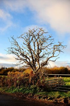 Yeats Country in Autumn