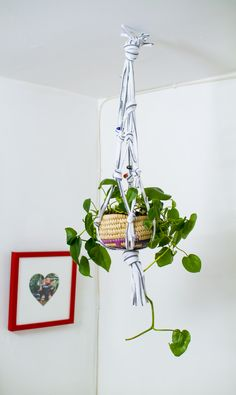 Make A Hanging Planter From An Old T-Shirt! (click through for tutorial)
