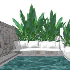Mon Palmer - island vibes client brief Backyard Pool Designs, Swimming Pools Backyard, Pool Decks, Garden Pool, Pool Landscaping, Backyard Patio, Lap Pools, Terrazas Chill Out, Outdoor Spaces
