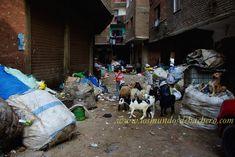 La ciudad de la Basura está al sur de El Cairo
