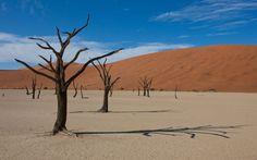 Desert in Namibia.