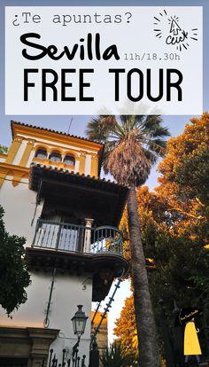 Que vienes a Sevilla, tienes que hacer hueco para ver la Sevilla más impresionante que jamás te hayas imaginado. Tenemos preparados diferentes free tours por Sevilla que harán que disfrutes y aproveches mejor tu visita. ¿Te los vas a perder?. Apúntate en la web o por whatsapp.   #freetoursevilla #freetourssevilla #visitarsevillagratis #sevillafreetour #tourgratissevilla #freetourensevilla #visitasguiadassevillagratis Tours, Free, 1, Town Hall, Awesome, Monuments