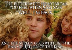 "The bittersweet heartbreak you feel when Sam says: ""Well, I'm back."" And the screen goes white at the end of Return of the King.  Submitted by: chongsterr"
