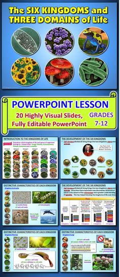 This highly visual and fully EDITABLE PowerPoint contains 20 slides that cover the six kingdoms and 3 domains of life. Many teachers teach the six kingdoms of life, but this lesson gives the added bonus of the three domains for those who want to enrich their junior science courses or for those who are teaching an upper level science/biology courses.