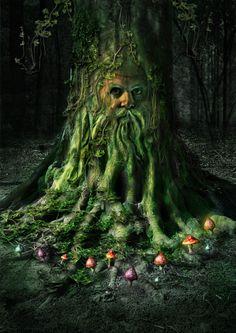 Tree of Life, Green Man, Fairy Ring Mushrooms Elfen Fantasy, 3d Fantasy, Fantasy Kunst, Fantasy World, Fantasy Figures, Fairy Land, Fairy Tales, Willow Leaf, Tree People
