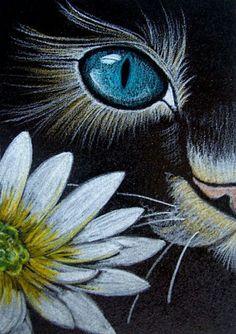 """""""Cat Behind Marguerite Flower"""" par Cyra R. Cancel"""