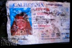 down -                                 Mexican-American singer Jenni Rivera's California driver's license (above) has been found amongst the wreckage of the small Learjet which crashed near the town of Iturbide in Mexico's Sierra Madre Oriental.  It'