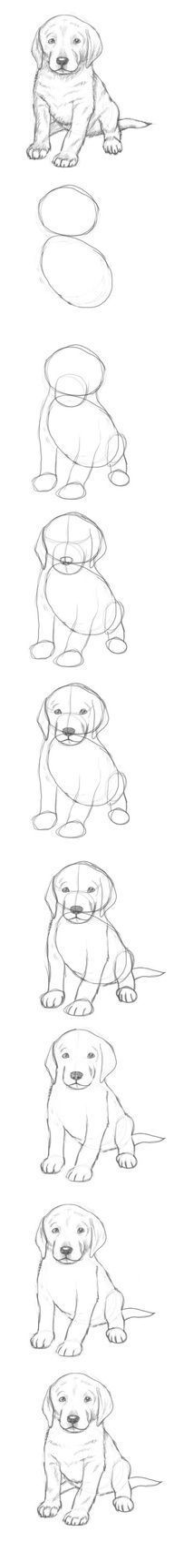 puppy art projects for kids \ puppy art . puppy art projects for kids . puppy art for kids . puppy art for toddlers . Pencil Art Drawings, Art Drawings Sketches, Easy Drawings, Drawing Lessons, Drawing Techniques, Animal Sketches, Animal Drawings, Dog Drawing Simple, Art Tutorials