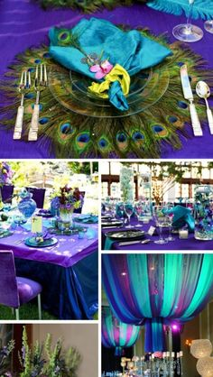 1000 Images About Peacock Wedding On Pinterest