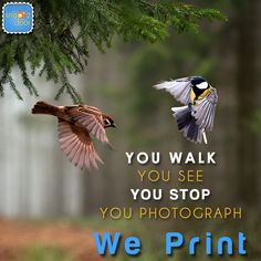 #YouWalk #YouSee #YouStop #YouPhotograph #WePrint Flat 50% OFF on all products + Free shipping! Grab this offer ASAP! Offer valid for a limited period. www.snap2door.com