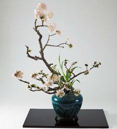 Styles of Ohara School of Ikebana English Ikebana Arrangements, Modern Flower Arrangements, Wedding Decorations, Table Decorations, Floral Design, Art Floral, Flower Art, Eye Candy, Glass Vase