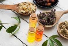 Tinctures of herbs in glass bottles and dry herbs on a wooden table. traditional medicine and herbal treatment concept. Herbal Treatment, Drying Herbs, Wooden Tables, Glass Bottles, Herbalism, Ethnic Recipes, Medicine, Spa, Concept