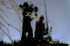 reflection cameraman - null