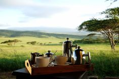 Blissful morning coffee overlooking the stunning scenery of the Serengeti National Park in Tanzania
