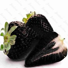 Cheap black strawberries, Buy Quality black strawberry seeds directly from China strawberry seeds Suppliers: Black Strawberry Seed Bonsai Rare Fruit Seeds climbing tree seeds fruit berry flower pot indoor plant bonsai food Orchid Seeds, Flower Seeds, Flower Pots, Black Strawberry, Strawberry Seed, Bonsai Plants, Bonsai Garden, Flowers Perennials, Planting Flowers