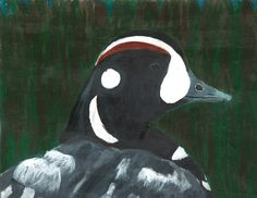 The 2013 Florida Junior Duck Stamp of Olivia Taylor, 14, honorable mention in Group 3, grades 7-9. DDWS photo