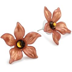 "Tarina Tarantino ""Classic"" Brown Large Jasmine Post Earrings ❤ liked on Polyvore"