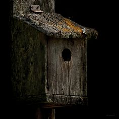 ♥love this rustic Bird House