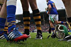 Hurling - socks and boots Ash, Bunny, Socks, Football, Sport, Sports, Gray, Soccer, Cute Bunny