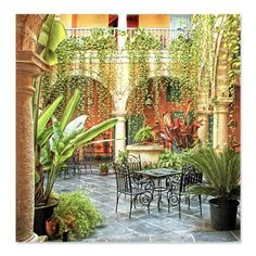 CafePress Havana Patio Shower Curtain  Standard White -- You can get more details by clicking on the image.