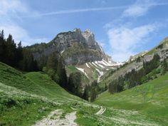 natural stillness Mystery, Mountains, Nature, Travel, Healing, Ghosts, Switzerland, Consciousness, Woods