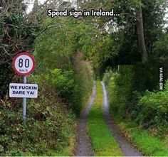 Funny pictures about Speed Signs Are Different In Ireland. Oh, and cool pics about Speed Signs Are Different In Ireland. Also, Speed Signs Are Different In Ireland photos. Funny Signs, Funny Jokes, Funny Irish Memes, Hilarious Sayings, Funny Humour, Hilarious Animals, 9gag Funny, Sarcasm Humor, Memes Humor