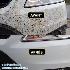 Utilisez du vinaigre blanc pour nettoyer les insectes collés sur la voiture