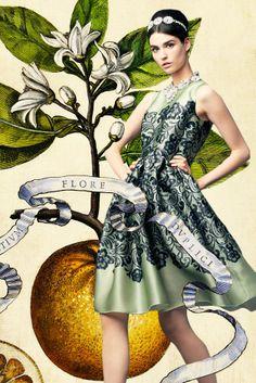 Dolce & Gabbana, primavera-estate 2014