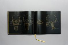Artist Gives Anatomy Textbook a Slick Makeover in Black and Gold | Mental Floss
