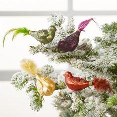 Bird Clip Ornaments, Set of 4 Cat Christmas Tree, Christmas Tree Ornaments, Christmas Decorations, Bird Decorations, Bird Ornaments, Glass Birds, Christmas Traditions, Crate And Barrel, Crates