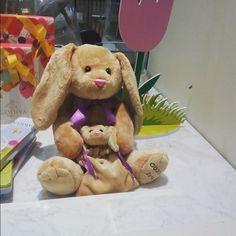 ¡Adorables conejitos! #softtoys #peluches #pelucheando