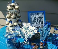 Royal Blue and Cheetah Print Graduation Graduation/End of School Party Ideas | Photo 1 of 33