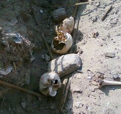 Photo: El-Hibeh Project  Remains exposed by looters at El-Hibeh.http://www.theworld.org/2012/03/egypt-looters-ransack-sites/